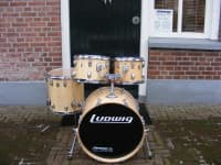 Ludwig Maple Naturel Wood